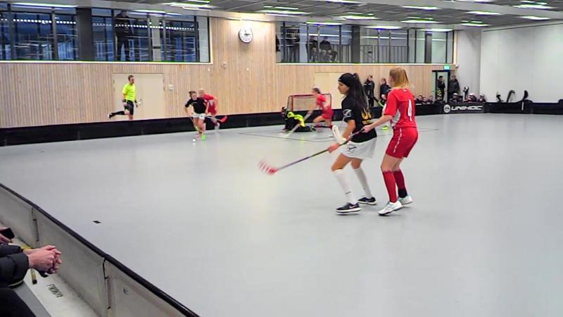Saint Petersburg United - TÄFTEÅ IK /SÄVAR (Швеция) 1 период 28.12.2016
