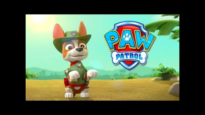 PAW PATROL EPISODES TRACKER RACE IN JUNGLE AND LEARN ANIMALS e1