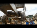 Biggest Snake Ever | Construction Workers Discover 10m Anaconda at Brazilian building site