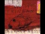 Les-Cowboys-Fringants-Plus-Rien (LYRICS IN DESCRIPTION BAR)