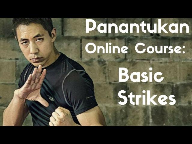 Panantukan OLC Basic Strikes