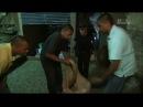 Спасатель змей 09 серия Брюс Бетмен Snake Crusader with Bruce George 2008