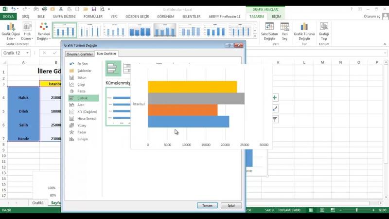 EXL13 07 002 Grafik Türleri