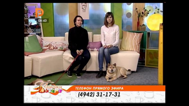 Чайники _18_05_2017_Ярослав Топаз и его