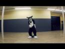 Groove with Rinn! Sugar Rush (Virtual Riot) Sergal Fursuit Dance (06.05.16)