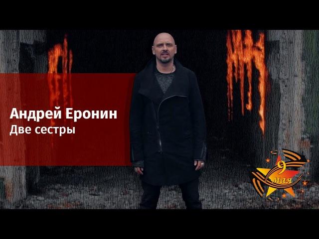Андрей Еронин - Две сестры
