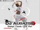 DJ Aligator - Stomp! (Tandu Club Mix)