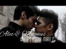 Alec Magnus || What's a soul mate ?