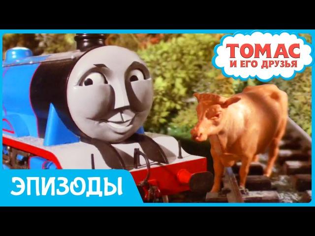 Томас и его друзья Коровы на рельсах Мультики про ПаровозикТомас для детей