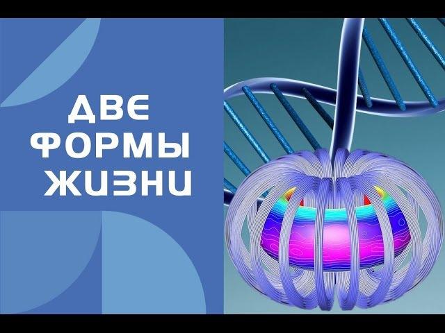 Две формы жизни в организме Человека. Катушки Мишина (вихревая медицина)