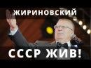 Жириновский В.В. СНГ незаконно! СССР Правительство Краснодарского края