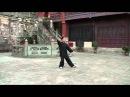 Ван Лин Тайцзицуань 24 формы Ян.Вид спереди.