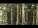 Вторжение Гигантов Attack on Titan 2 Сезон (6-12) 6, 7, 8, 9, 10, 11, 12 Серия