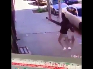 Хозяйку, которая едва не задушила собаку, спасая её от кота высмеял весь Нет