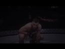 UFC  Vine✖️#5