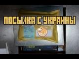 Посылка из Украины l попла-поппер,головастик,поводки,мухи
