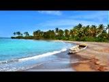 ACOUSTIC ALCHEMY - JAMAICA HEART BEAT