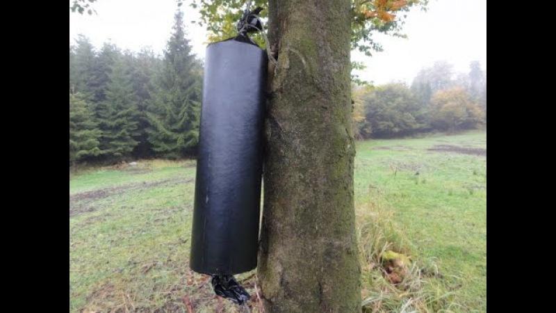 Was passiert wenn Riesenböller Baum sprengt