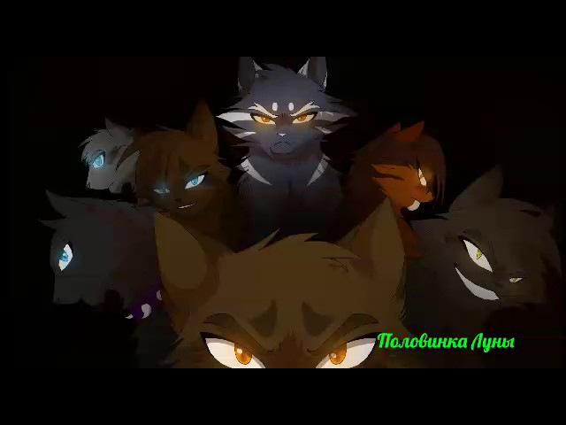 Коты Воители Кукла клип Искра Коршун Остралистая Грач Белка Бич Половинка Луны Воробей Кленовница Горелый