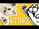 Kittens Being Cute Simon's Cat Snaps FAN VIDEOS