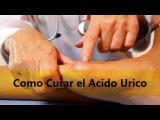 Como Curar el Acido Urico
