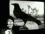 Captain Beefheart &amp Frank Zappa - Debra Kadabra