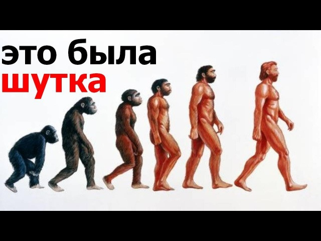 Опровержение теории Дарвина Эволюции не было