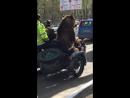Где твой медведь В Сыктывкаре на мотоцикле