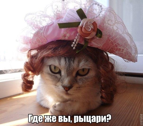 Катя Сальцова - фото №16