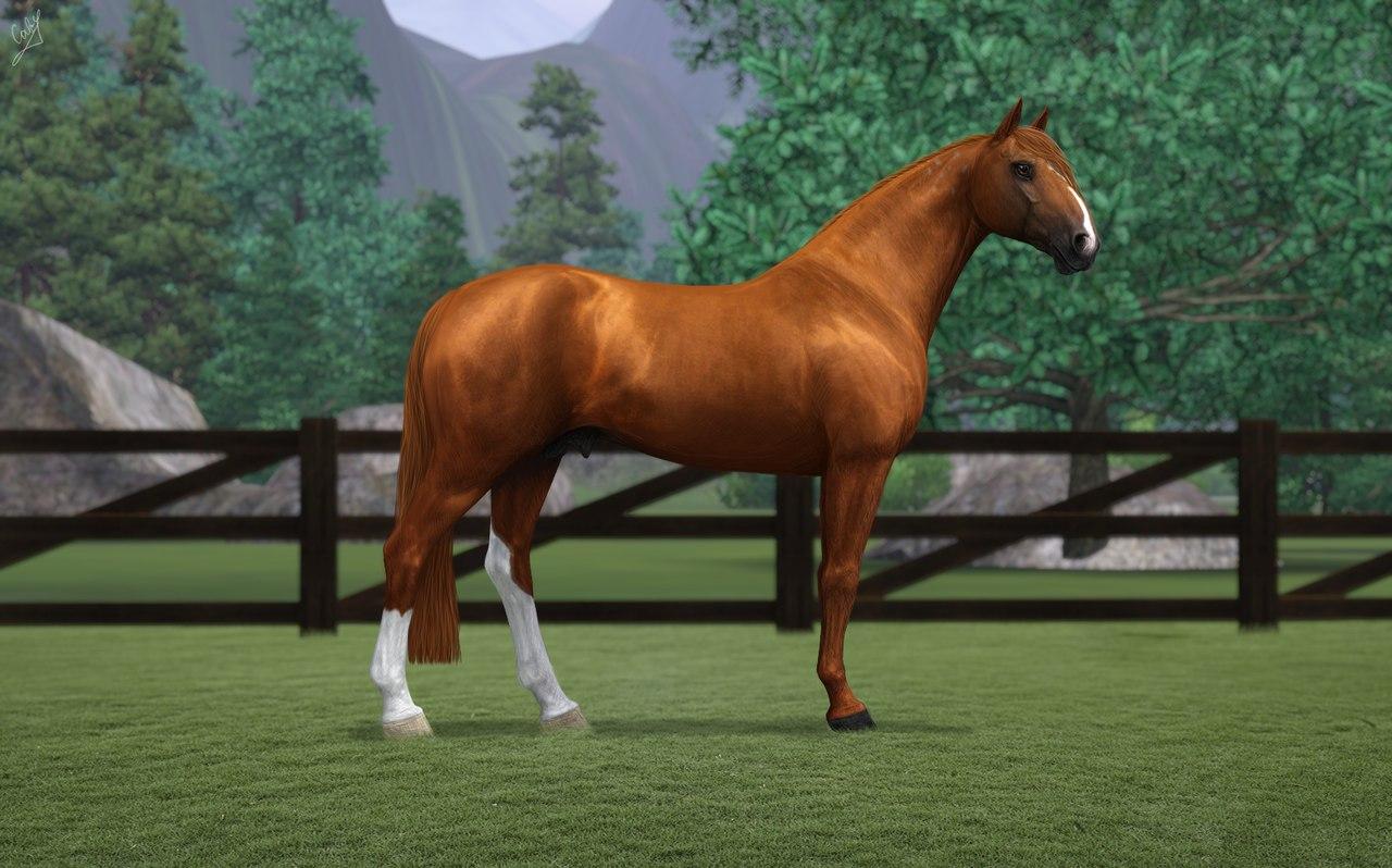 Регистрация лошадей в RHF 2 - Страница 7 9M2tVGODAXA