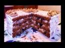 Торт Бисквитный Медовик со Сметанным Кремом с Черносливом и Грецкими Орехами Honey Cake Medovik