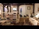Кормление кошек Zoki cat cafe в 20 30
