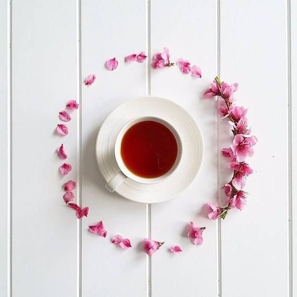 Любите ли Вы чай так, как его люблю я (6 фото)
