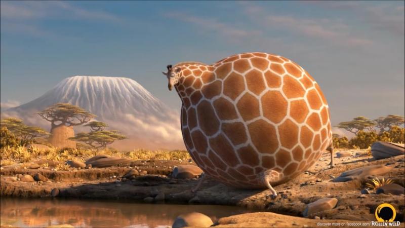 После новогодних праздников/ROLLIN WILD - Giraffe - what if animals were round 2 » Freewka.com - Смотреть онлайн в хорощем качестве