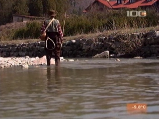 Тайны Ниро Вульфа (2002) 2 сезон 12 серия. Иммунитет к убийству [Страх и Трепет]