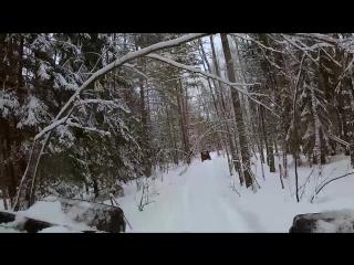 Трофи по снежным лесам на ГАЗ-66 и УАЗ. Зима 2017. Тверская область.