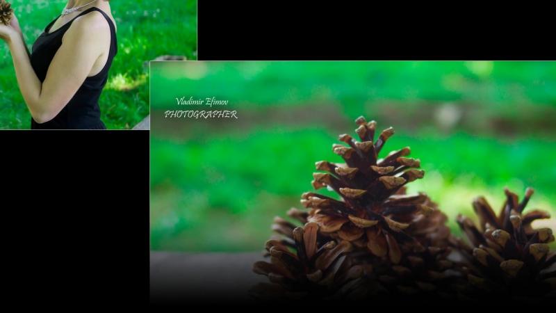 Слайдшоу под музыку из Ваших фото, или сделанные мною. Фото-Видео сьемка. Монтаж фото и видео. тел. 8-988-861-09-01. Владимир