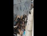 Последствия шторма. Пляж превратился в помойку. Море очень мудрое, всё возвращает людям!. Оно очистилось и успокоилось Сочи