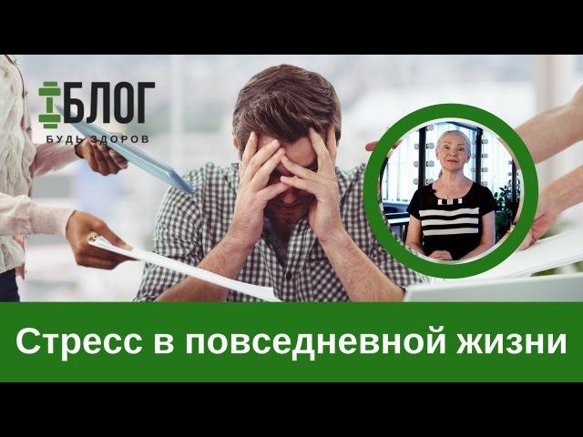 Н.Г. Байкулова о роли стресса в жизни » Freewka.com - Смотреть онлайн в хорощем качестве