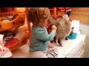 Супер кот Смешное видео про котов 3