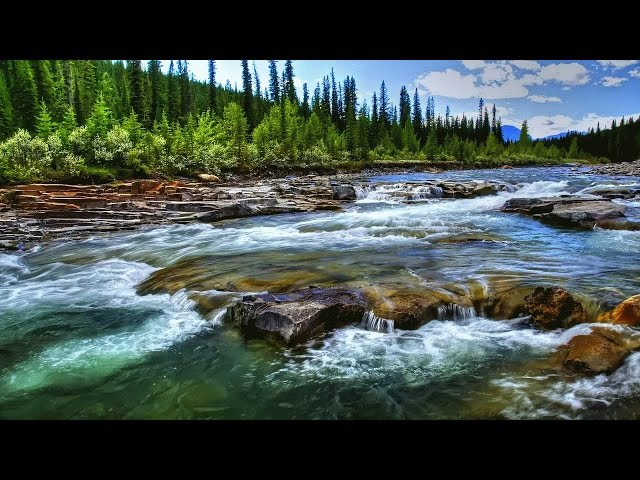 Река Миссисипи - чудеса дикой природы. Документальный фильм