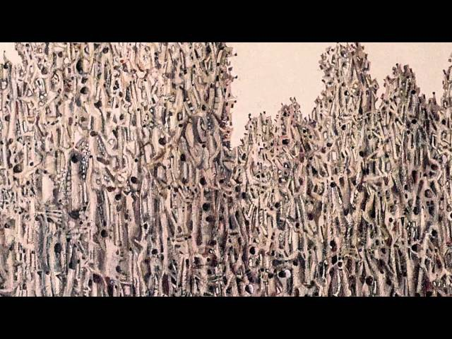 Марчук Іван Степанович. Український живописець. Ukrainian painter. Virtual slide show