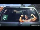 машина-жаль-что-не-идет-дождь-Arnold-Schwarzenegger-2056902