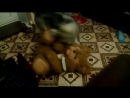Абадон насилует медведя!))))