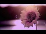 Radiohead - Vanilla Sky
