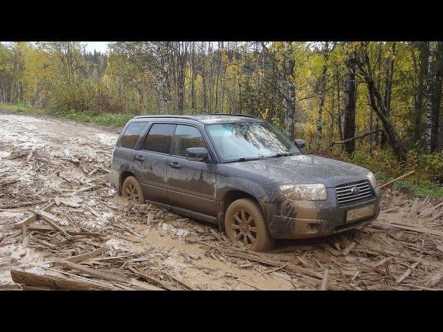 Шудья-Пендыш (лайт поездка на УАЗ Патриот и Subaru Forester)