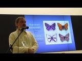Александр Бенедиктов, Фотосъемка цветов и насекомых в ультрафиолете. Часть-2