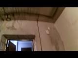 электропроводка васильки