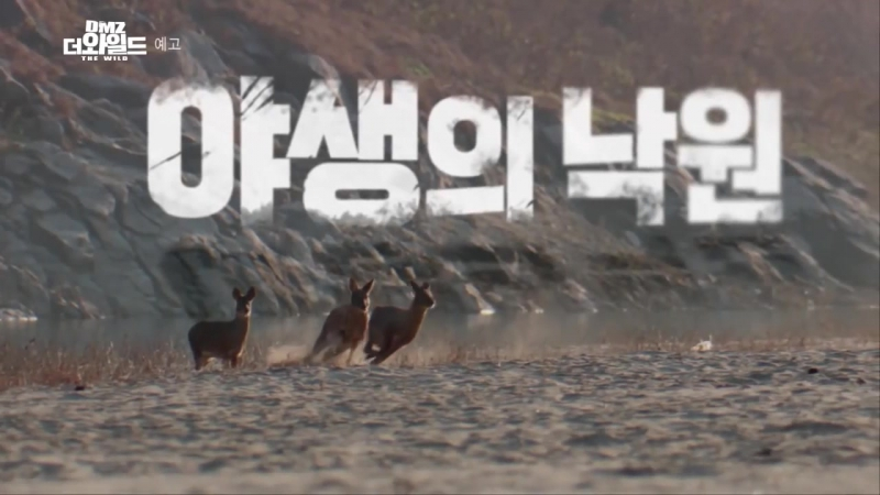20170331【MBC】DMZ, The Wild Trailer presented by LEE MIN HO