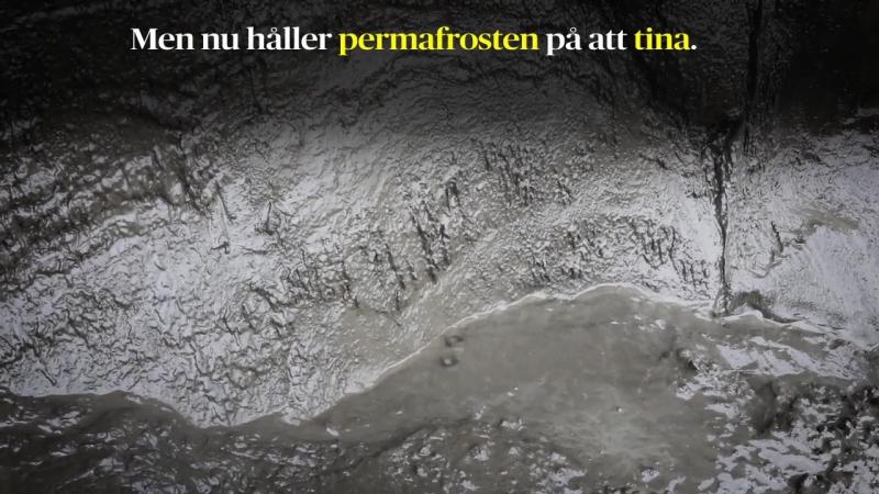 Sibirien sjunker sakta ned i dyn när permafrosten tinar